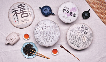 Drinkability of Puer at Different Stages
