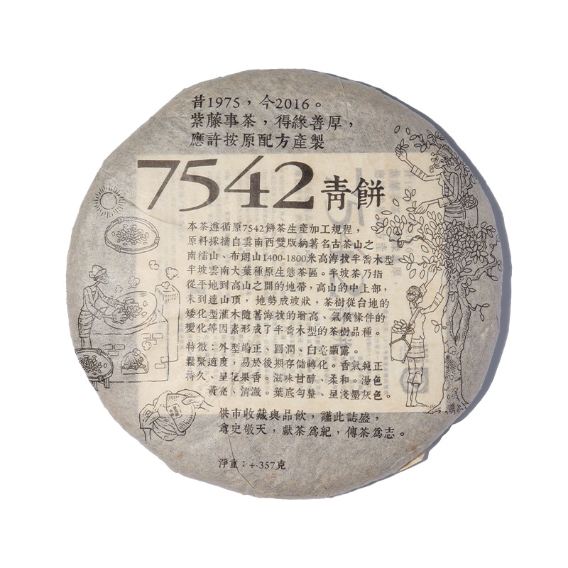 Raw Puer Tea | Purple Cane 7542 Year 2016