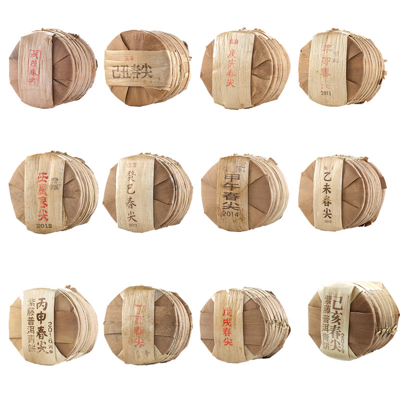 Raw Puer Tea | Full Set Collection of Chun Jian Series Year 2008-2019 (1 set 12 stacks)